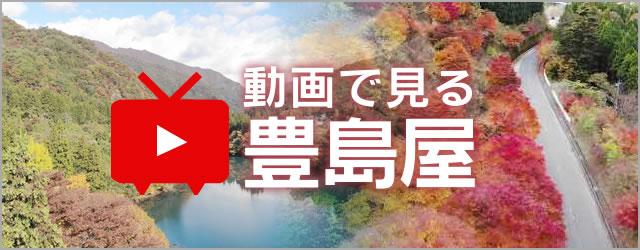 動画で見る豊島屋