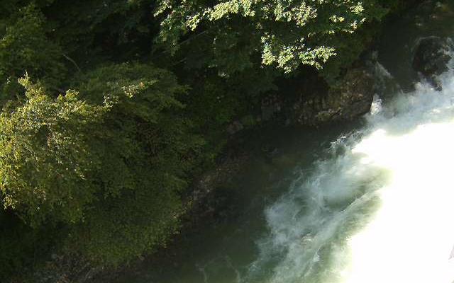 渓流側の昼の様子